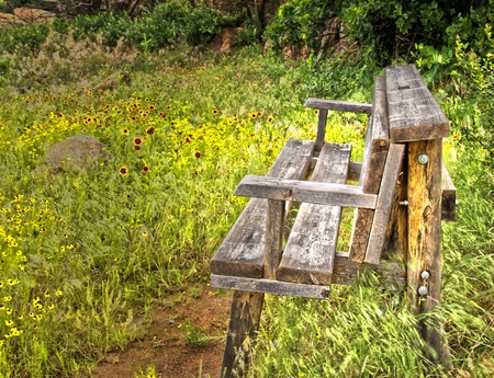 Country Bench in field of Wildflowers