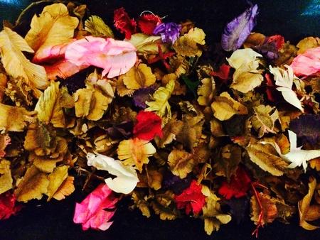 flores secas: Flores y hojas secas perfumadas Foto de archivo