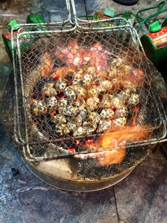 grill: Charcoal barbecue grill snails