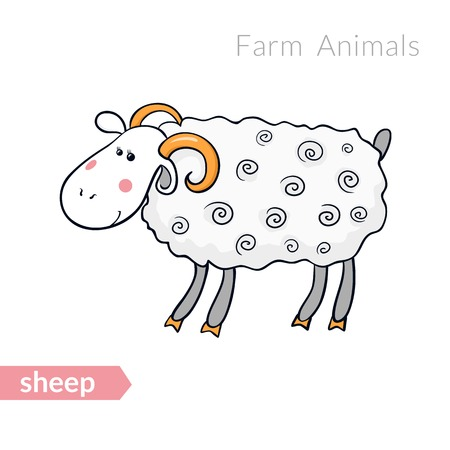 pet breeding: Vector cartoon sheep with thick fur isolated background