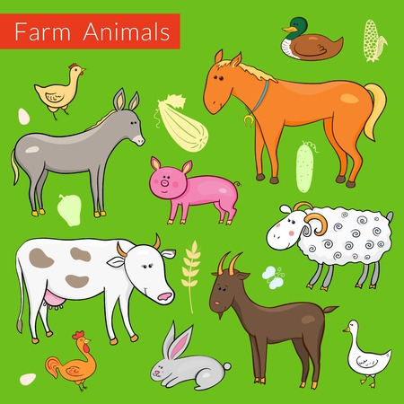 Set of vector different colorful farm animals in cartoon style on green background Vector
