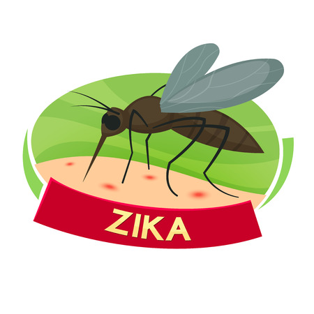 transmitted: Virus Zika concept design, mosquito bites illustration