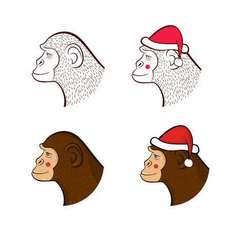 year profile: Holiday set far New year, four different monkeys in cap of Santa Claus and without, pencil drawing outline  and colorful cartoon character faces in profile, vector illustration