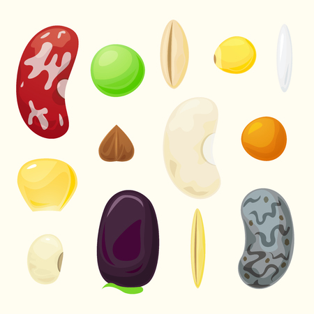 Set grains of different plants, raw materials for cereal, vector set