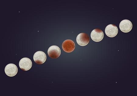 All phases of a total lunar eclipse on nigth sky background, vector illustration
