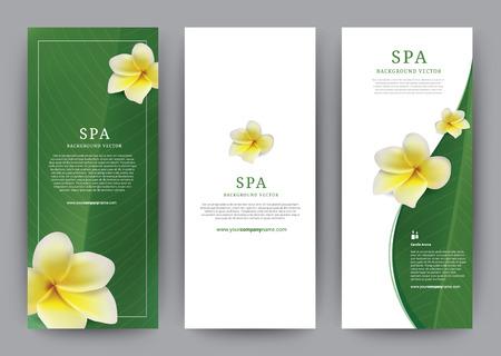 Fiore del frangipane della stazione termale dell'insegna del modello, progettazione moderna della foglia verde, opuscolo dell'aletta di filatoio del manifesto dell'opuscolo, illustrazione di vettore