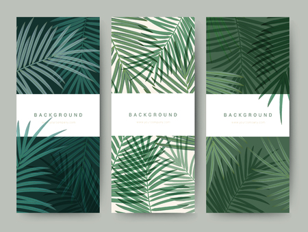 Branding Packaging palm coconut bamboo tree leaf nature background, logo banner voucher, spring summer tropical, vector illustration Stock Vector - 96427493