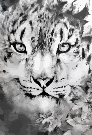 siberian tiger: black and white painted leopard Illustration