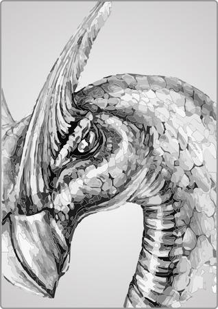 zwart-witte draak