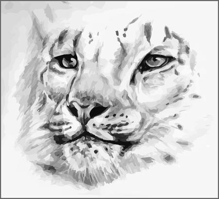 undomesticated cat: black-white painted leopard