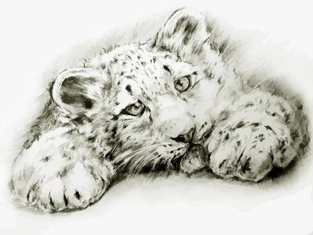 그린: black-white painted leopard