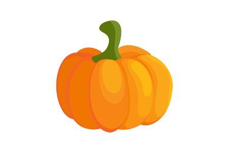 Pumpkin colorful icon Illustration