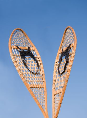 Snowshoes - ready for action!