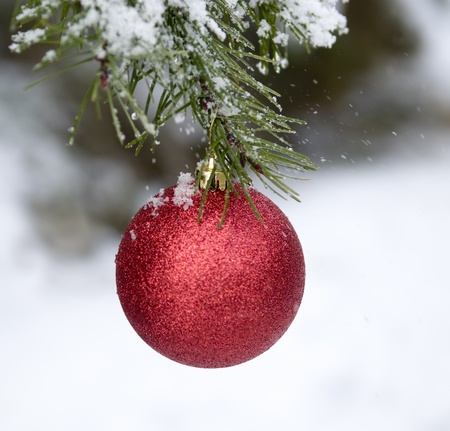 Christmas decoration in Outdoors