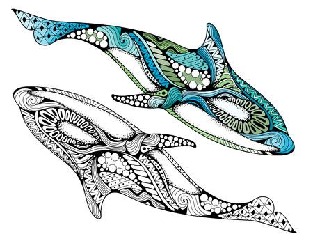 Patrón de detalle de doodle de animales étnicos - ilustración de ballena asesina. Dibujado a mano Orcinus orca aislado sobre fondo blanco para páginas de libros para colorear antiestrés para adultos