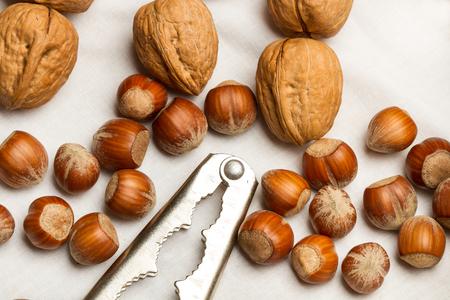 Walnuts, hazelnuts, almonds and nutcracker