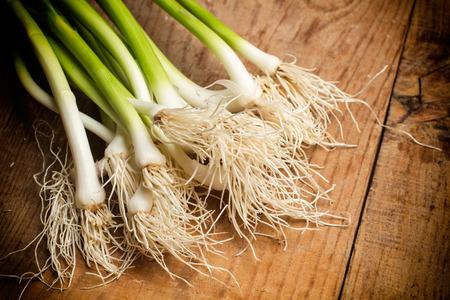 garlics: Fresh and green garlics Stock Photo