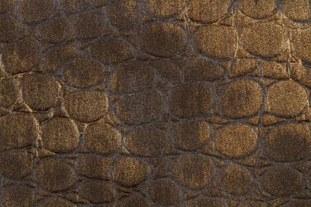 A brown lether cloth with reptile texture