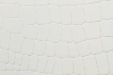 A white leather cloth with reptile texture in a close up view Banque d'images - 129859128