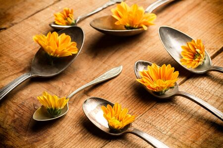 Spoons and marguerites on a wooden table
