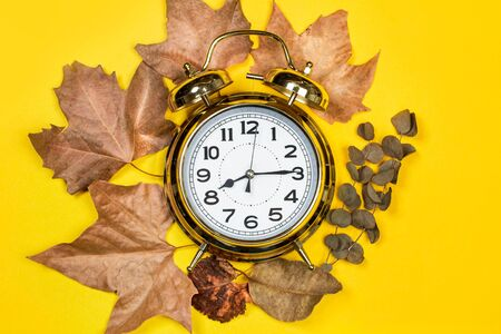 Alarm clock and dry leaves on a yellow background