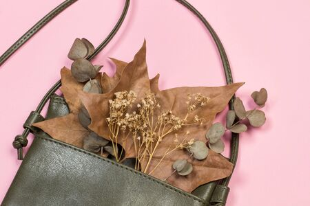 A leather handbag with dry leaves on a pink background Stok Fotoğraf