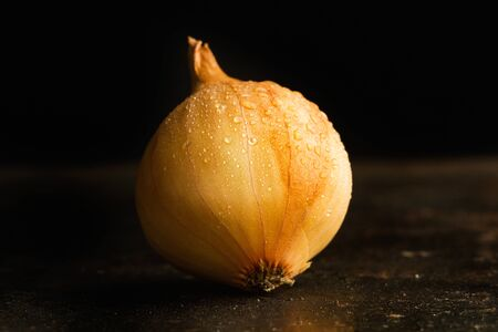 Wet small white onion with skin on a dark background