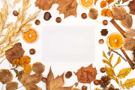 An autumn background made with dry leaves with copy space