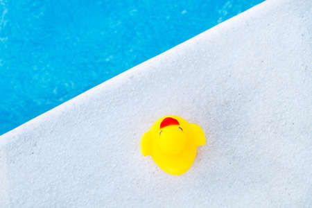 Yellow rubber duck in the edge of a swimming pool Standard-Bild
