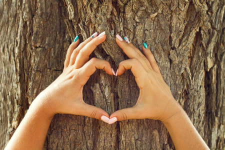 Woman hands with heart shape in front of a tree trunk