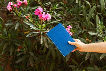 Woman hand holding a blue book in the garden with an oleander plant behind