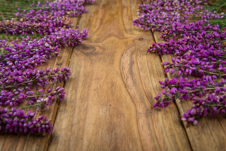 erica: purple and viola heather flowers on wooden table Stock Photo