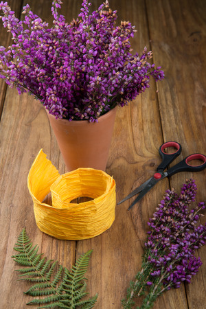 erica: purple and viola heather flowers on wooden table in ceramic pot with yellow ribbonand scissors