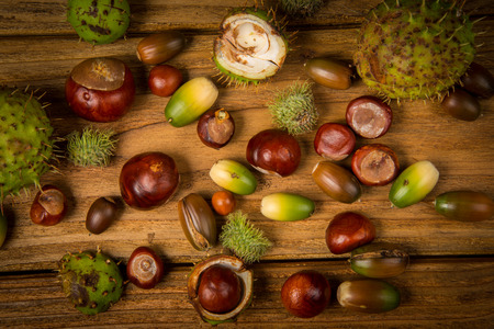Autumn fruits of chestnut and acorn on wooden retro table in fall colours photo