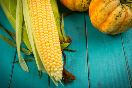 rustic kitchen: Fresh corn on cob on rustic kitchen blue table