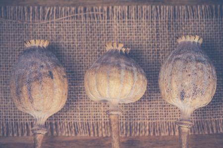 Poppy heads on wooden background photo