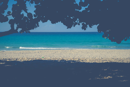 sea scape: view over blue ocean sea scape behind trees Stock Photo