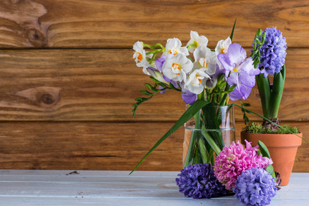 freshly clicked spring flowers photo
