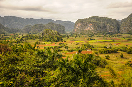 VINALES VALLEY, CUBA - JANUARY 19, 2013. Panoramic landscape view over farm fields in Vinales Valley, Pinar Del Rio province in Cuba, famous for tobacco plantations, caves and Valley itself.