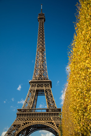 atraction: PARIS, FRANCE - NOVEMBER 9, 2014 Eiffel Tower over blue sky and fall leaves, main tourist atraction in Paris, France.