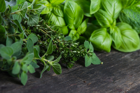 Fresh herbs cut in home garden, on wooden rustic table Stok Fotoğraf - 40543447