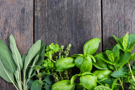 herbs: Hierbas frescas del jardín, en el fondo de madera rústica Foto de archivo