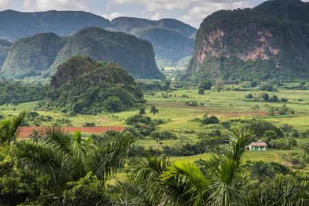 Vinales 밸리, 쿠바 mogotes와 풍경의 파노라마보기