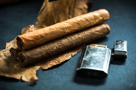tobacco leaf: Cuban cigars on tobacco leafs, dark background