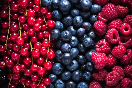 blackberry fruit: Farm fresh summer berry fruits , food background