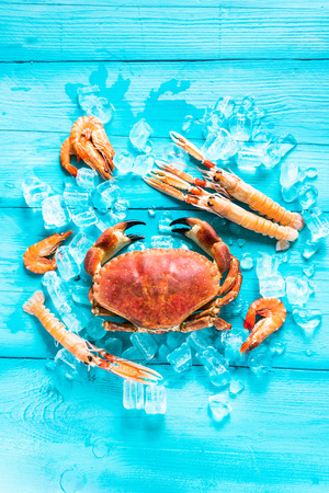 Sea food background from above, vibrant colors Stock Photo - 50411728