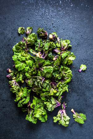 sprout: Fresh brussel and kale sprouts flower, straight from garden on table.