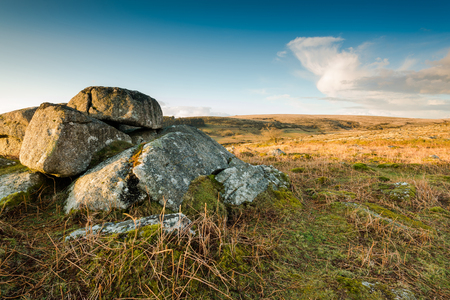 granite park: Granite rocks formations in wild open area at Dartmoor National Park. Stock Photo
