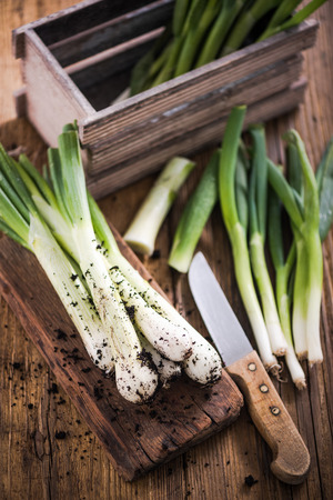 green onion: Fresh leek straight from garden soil, on wooden farmhouse table in sunny kitchen