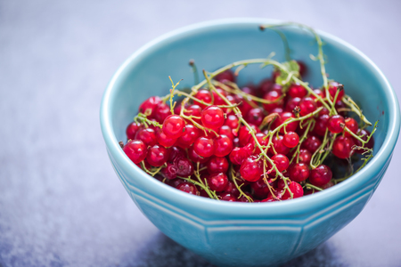 redcurrant: fresh redcurrant in bowl